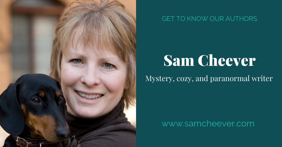 View post titled Author Q&A: Sam Cheever